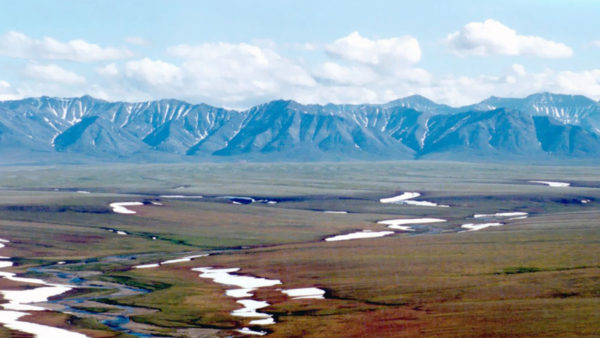 BREAKING NEWS: Interior Action on Arctic Refuge is a Human Rights Violation
